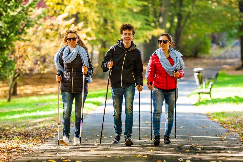 Le manque d'activité physique (AP) est responsable de plus de 3 millions de décès chaque année dans le monde.