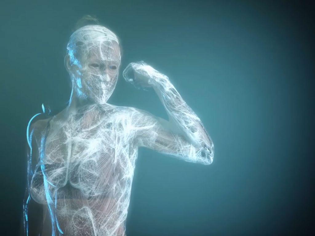 Comme une toile protectrice, élastique et innervée, les fascias enveloppent l'intérieur de notre corps, de la tête au pied.