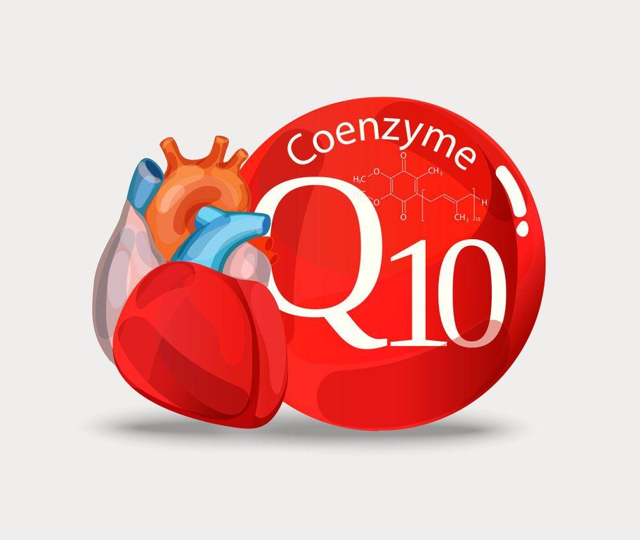 La coenzyme Q10 est un antioxydant cinq fois plus puissant que la vitamine E.